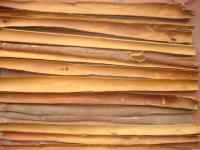 Viet nam split cassia( cinnamon)
