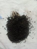 Assam black tea ctc