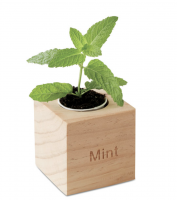 Herb pot in wooden case