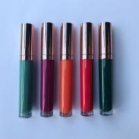 MS-LP-24 sexy Waterproof and touchproof Nude Matte Lipstick lip gloss_7