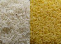 Rice Basmati & Non-Basmati Long Grain.