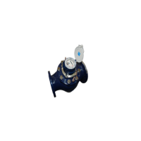 WSD wide-range water meter