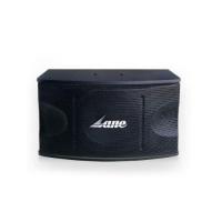 Professional speaker- sp- 450