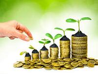 BUSINESS FINANCING & PROFESSIONAL SERVICES