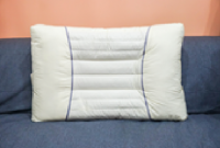 Cassia seed generation 2 pillow -a1017