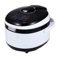 Fs501a pressure cooker