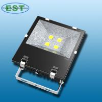 LED Flood light (FL-V-200)