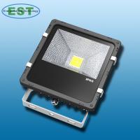 LED flood  light (FL-V-30)