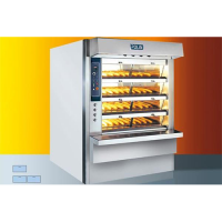 Polin Cyclothermic Oven