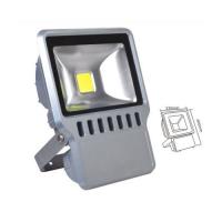 LED Flood Light: SC-F001-70