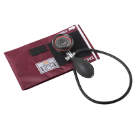Palm Type Aneroid sphygmomanometer TY-P02