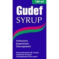 GUDEF 100 ML SYRUP