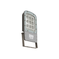 5003 Series LED Floodlight