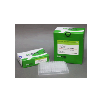 AccuPower ProFi Taq PCR PreMix