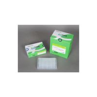 AccuPower PCR PreMix