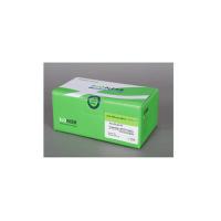 Accupower greenstar™ qpcr premix