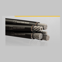 AERIAL BUNDLE CABLE, ACSR
