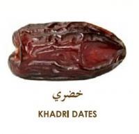 Khadri date