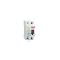 SGR Series Residual Current Circuit Breaker 2P