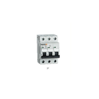 EP06K Series Miniature Circuit Breaker 3P