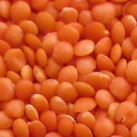 RED LENTILS (FOOTBALL)