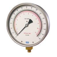 High Pressure Test Gauges