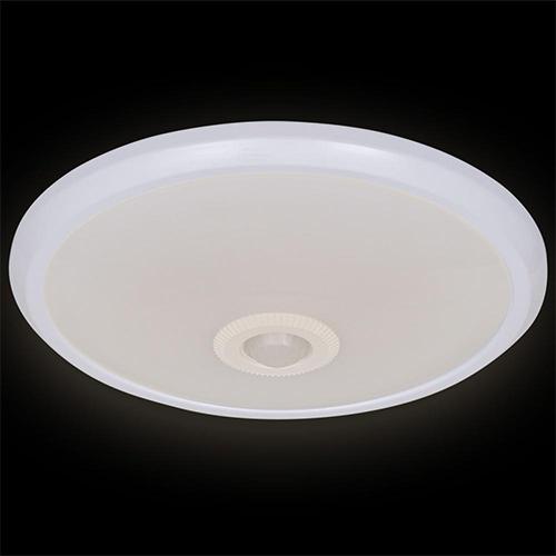 Led ceiling light-v-sd0548ry