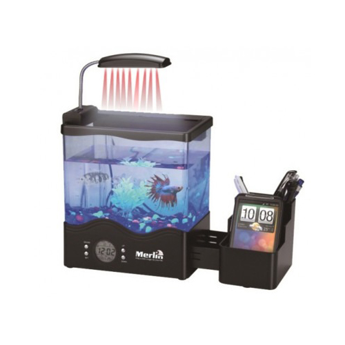 Merlin desktop aquarium