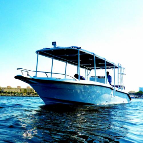 Al marakeb dino 31x diving boat