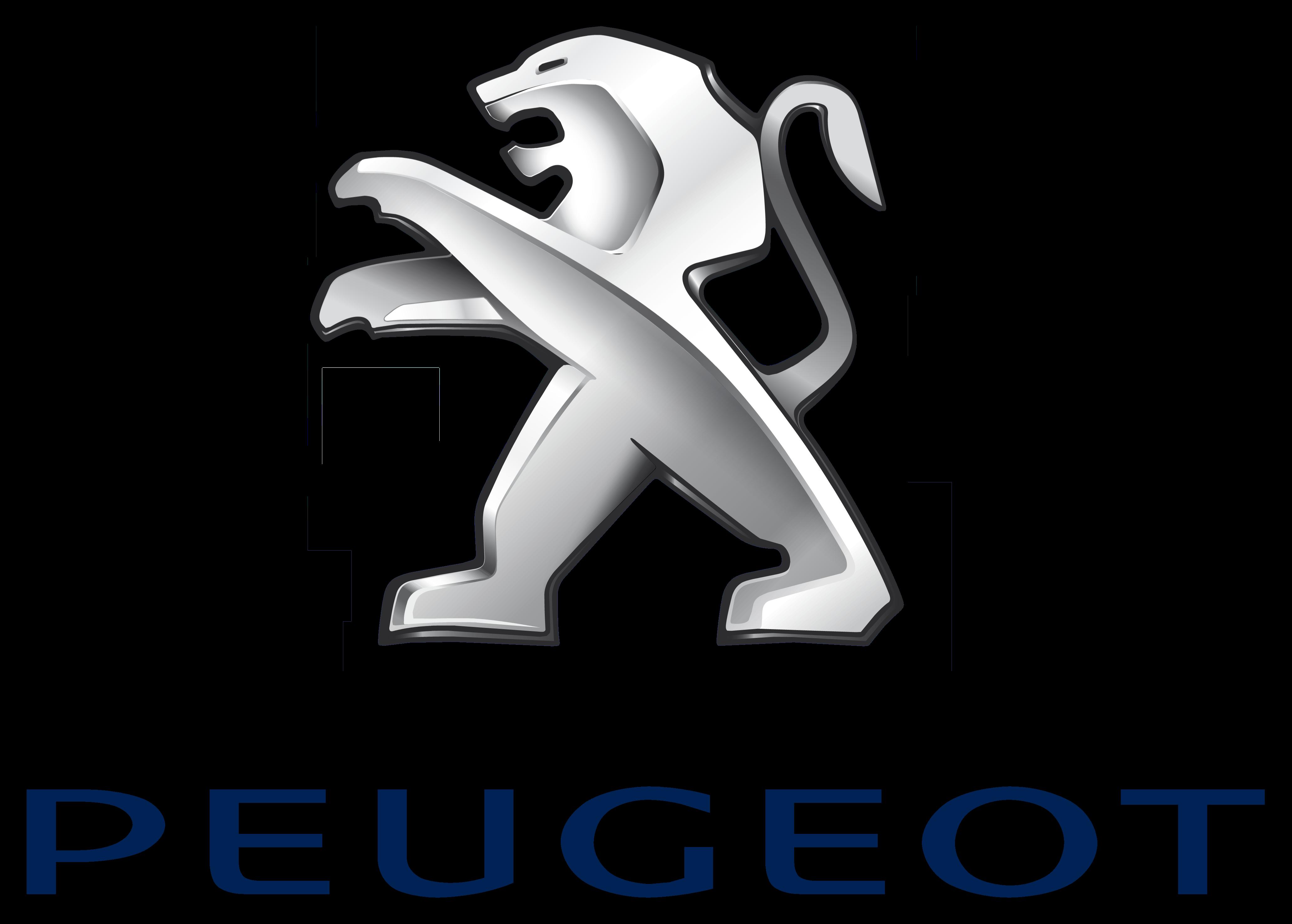Peugeot 1307 ZV RADIATOR HOSE_3