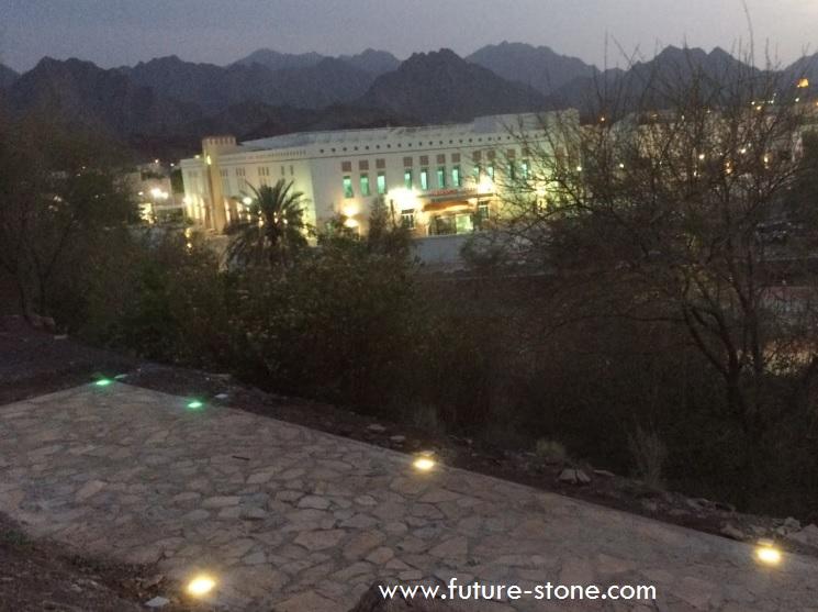 FUTURE STONE LIGHT FS 201_2