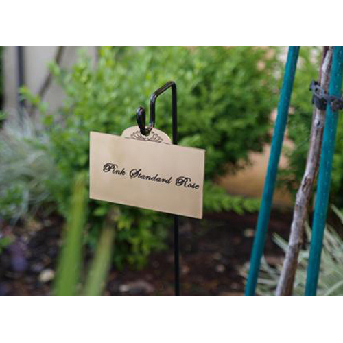 OECHSLE PLANT STICK_3