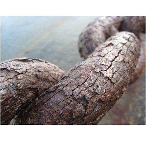 Bionanosol rust buster