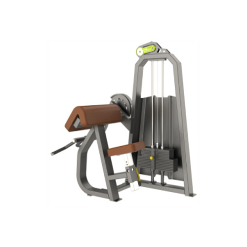 SPORTS LINKS T – 1030 CAMBER CURL STRENGTH EQUIPMENTS_2