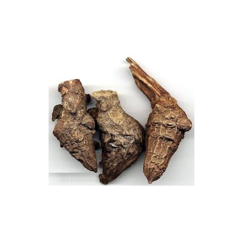 A002 aconitum ferox botanical pods roots