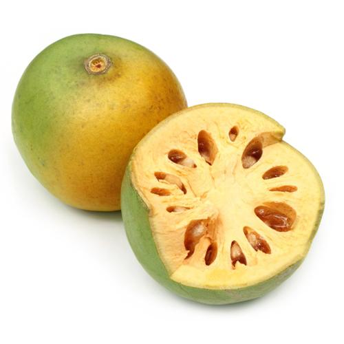 A005 aegle marmelos botanical fruits