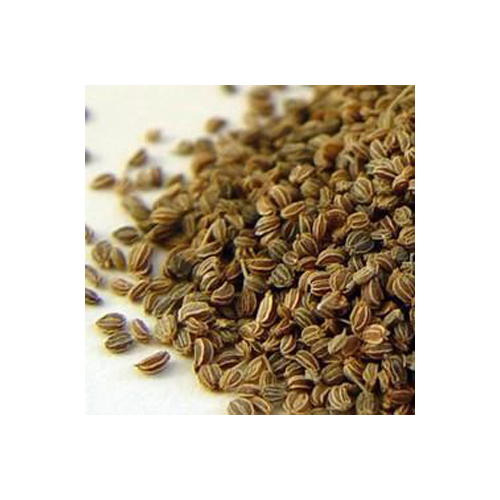 A008 apium graveolens botanical seeds
