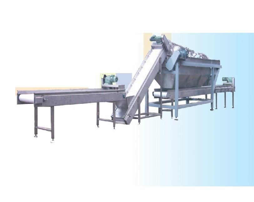 Vegetable sizer fruits pulp production