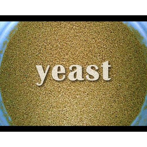 Danem international yeast (chemical division)