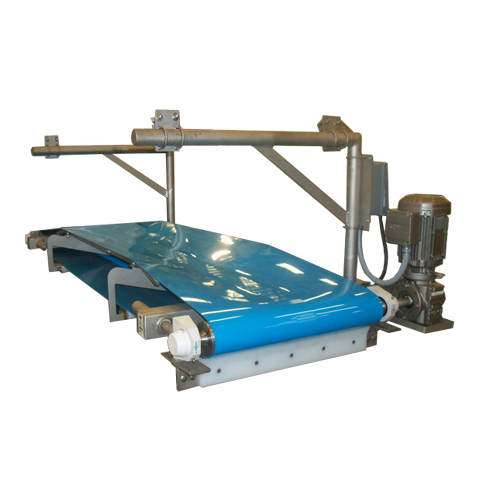 Dough distribution conveyor