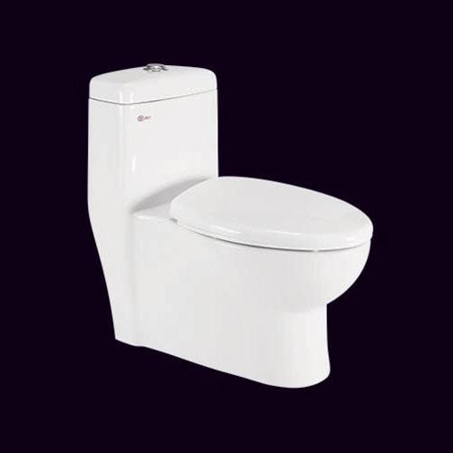 1010 one piece toilet seat (s trap)