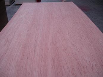 Bingtangor Plywood_2