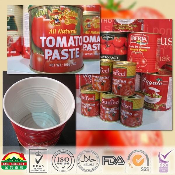 Canned Tomato Paste 198g/tin_2