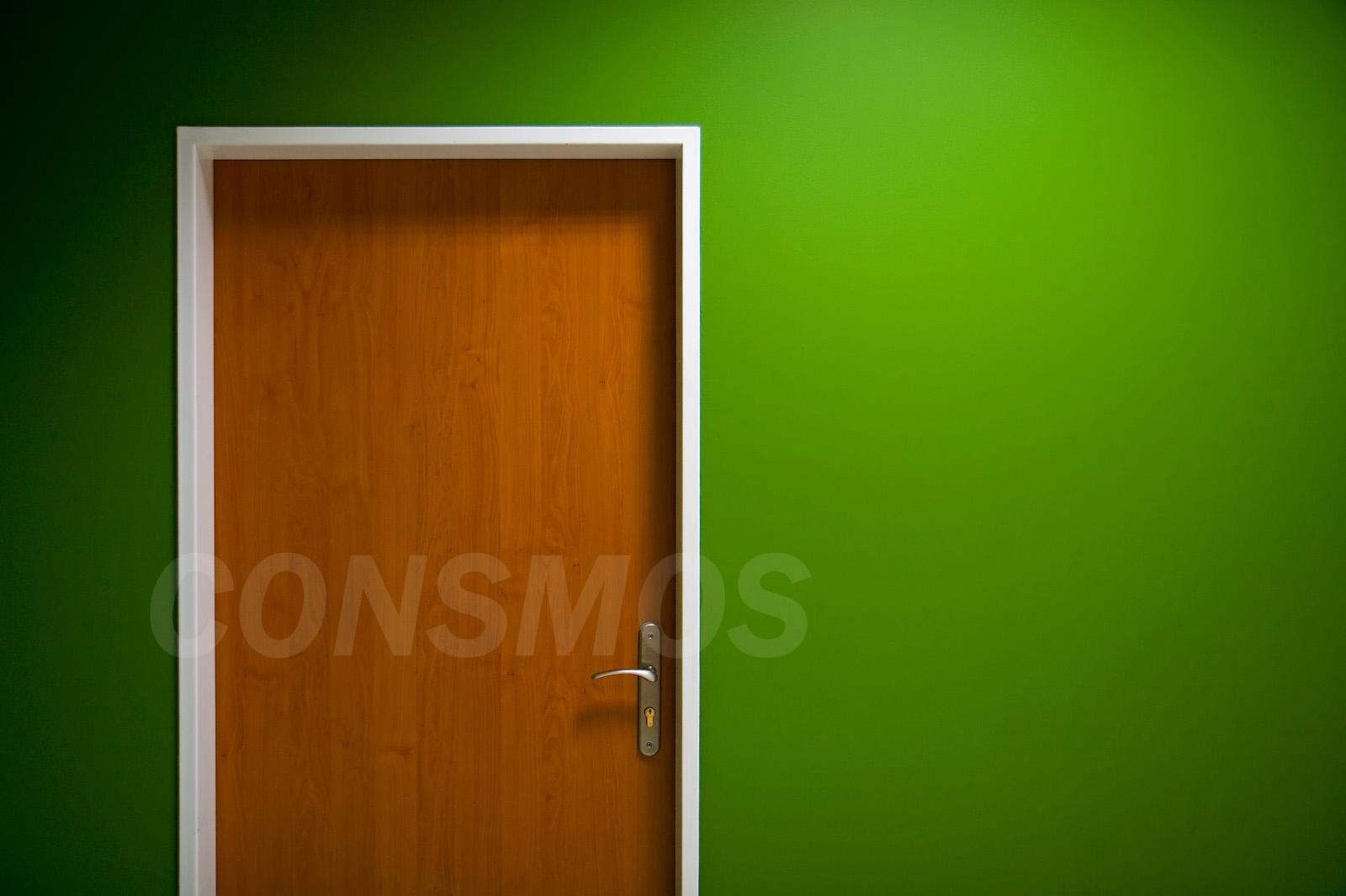 Flush door_2
