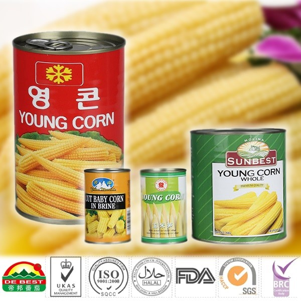 Canned baby corn 2840g_2