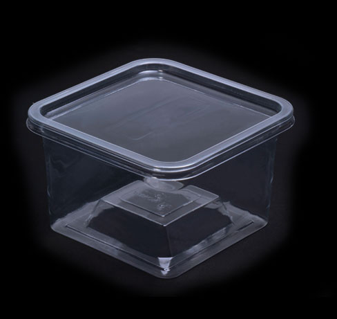 Small square container- smq-48fb