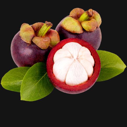 Mangosteen Puree Fruit_2