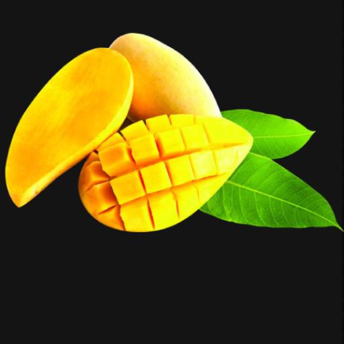 Mango puree fruit