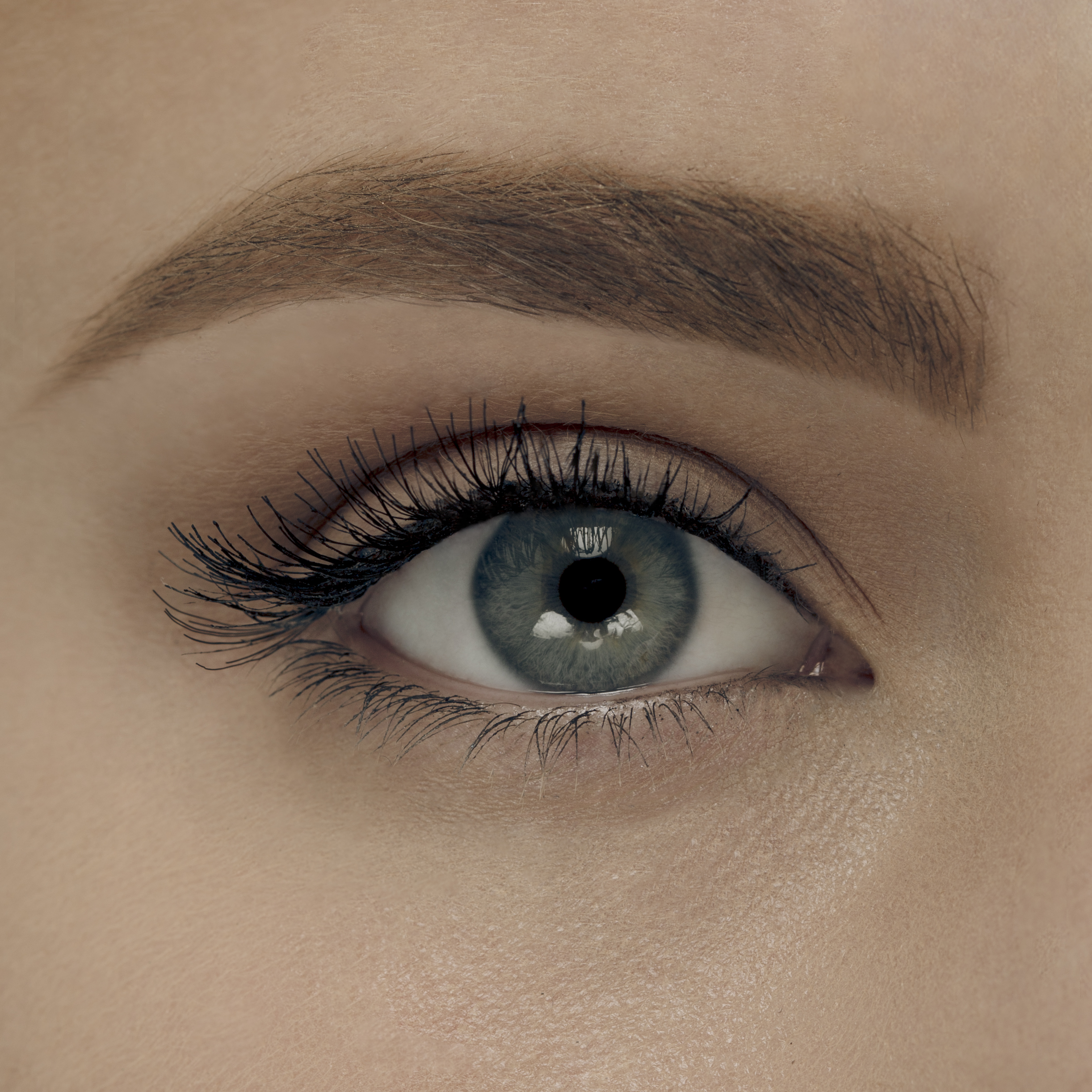 Pout Case Eyeshadow_3
