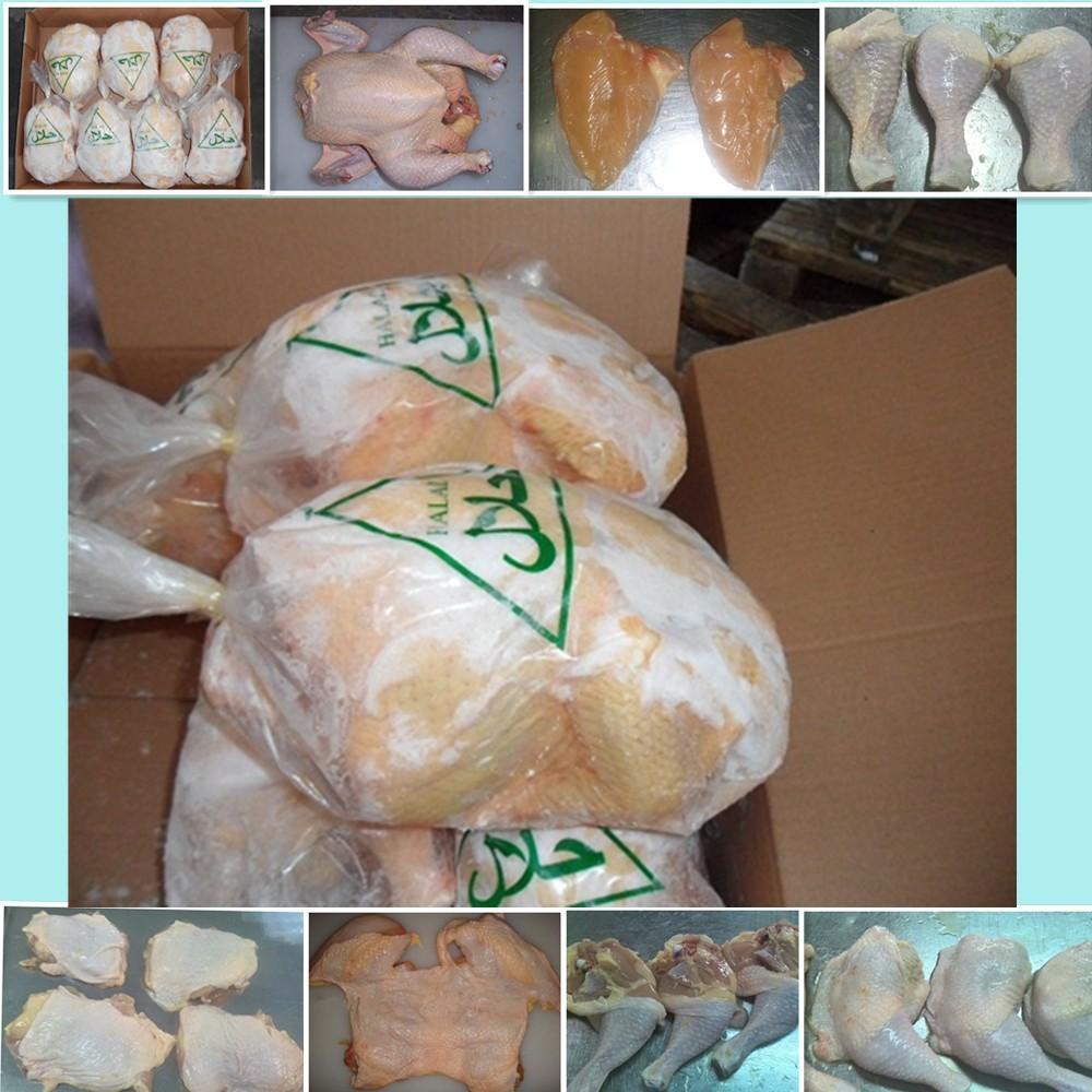 Halal Frozen Chicken MDM - Mecanically Deboned Meats for sale_7
